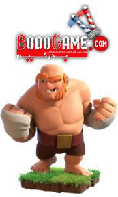 همه چیز درباره Boxer Giant